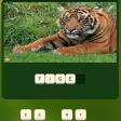 Jugar gratis a Zoo Trivia