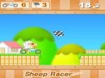 Jugar gratis a Sheep Racer