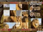 Jugar gratis a Puzzle Safari