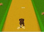 Jugar gratis a Dog Dash