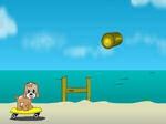Jugar gratis a Maxim's Seaside Adventure
