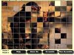 Jugar gratis a Mega Puzzle