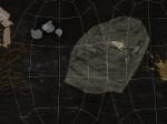 Jugar gratis a Diseñador de fósiles: helechos y palmas