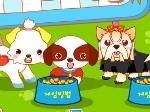 Jugar gratis a Peinar animales