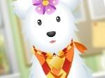 Jugar gratis a Salón de belleza de mascotas