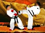 Peleas de Taekwondo
