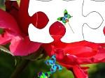 Reino de las flores