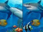 Diferencias bajo el mar