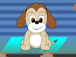 Jugar gratis a Dogs Care Center