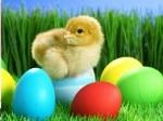 Jugar gratis a Puzle de Pascua