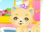 Lovely Princess Cat