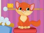 Jugar gratis a Mara y sus gatitos