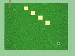 Amazing Golf Pro